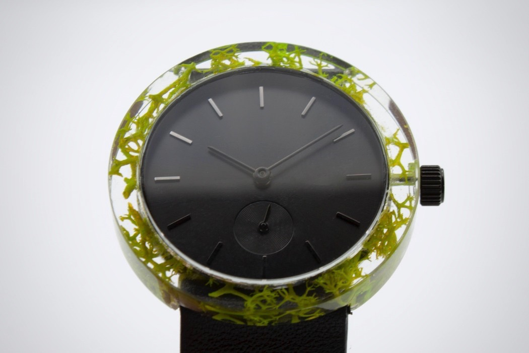 botanist_watch_11